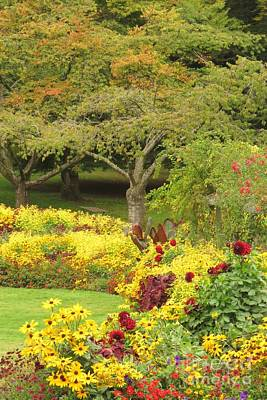 Photograph - October Garden by Frank Townsley