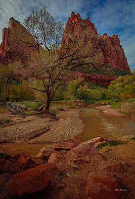 Photograph - October In Zion by Tim Bryan