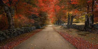 Photograph - October Lane by Robin-Lee Vieira