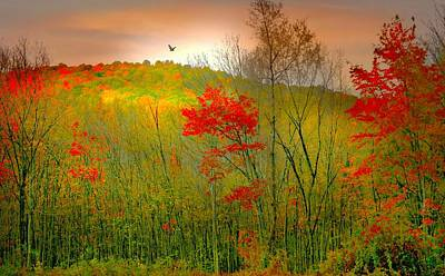 Photograph - October Leaves Now by Diana Angstadt