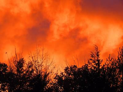 Photograph - October Orange - Sunset by MTBobbins Photography