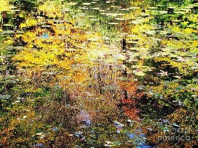 Photograph - October Pond by Melissa Stoudt