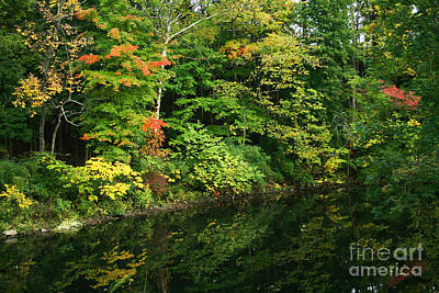 Photograph - October Reflections by Karen Adams