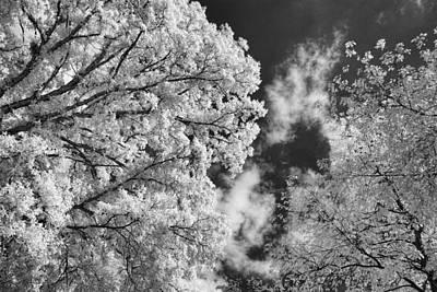 October Sky Ir Art Print