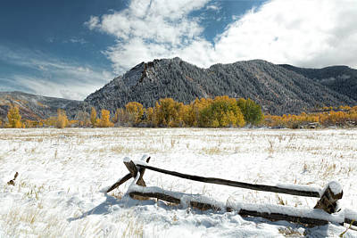 Photograph - October Snowfall Aspen Colorado by Jemmy Archer