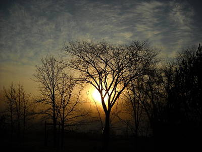 Photograph - October Sunrise Behind Elm Tree by Kent Lorentzen