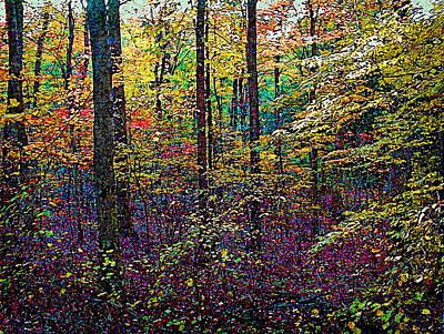 October Woods Art Print