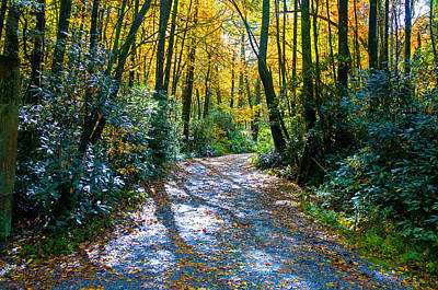 Photograph - October's Path by Allen Carroll