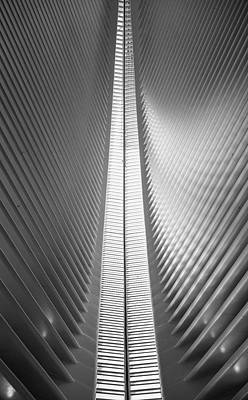 Photograph - Oculus 2 by Rand