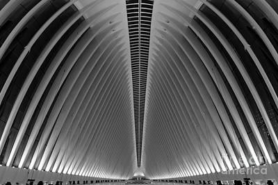Oculus World Trade Center  Art Print