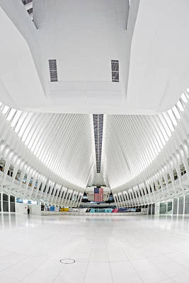 Photograph - Oculus Wtc Transportation Hub by Susan Candelario