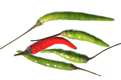 Photograph - Odd Chilli Out by Steve Purnell