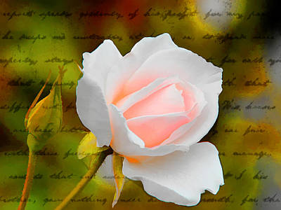 Photograph - Ode To A Rose by Diane Wood