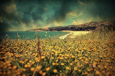 Impressionism Photos - Ode to Melancholy by Zapista Zapista