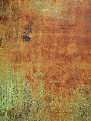 Photograph - Ode To Rust by David King