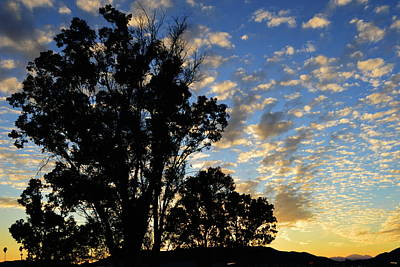 Photograph - Ode To The Day by Glenn McCarthy Art and Photography
