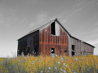 Photograph - Odell Barn Vi by Dylan Punke