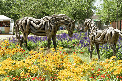 Gatineau Photograph - Odyssey The Horse And Hope The Colt Sculptures Made Of Driftwood by Bob Corson