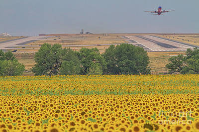 Photograph - O'er Fields Of Gold by Jim Garrison