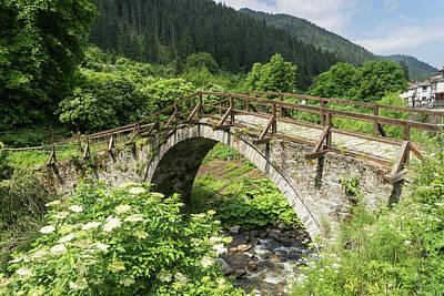 Photograph - Of Mountain Streams And Olden Bridges by Georgia Mizuleva
