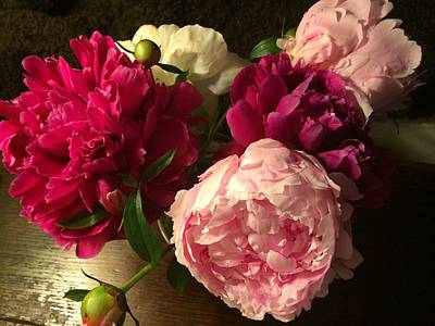 Photograph - Off Center Peonies by Gillis Cone