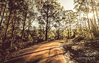 Photograph - Off Road Trails by Jorgo Photography - Wall Art Gallery
