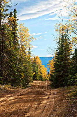 Photograph - Off The Alaska Highway by Cathy Mahnke