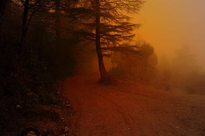 Photograph - Off The Beaten Path by Salman Ravish