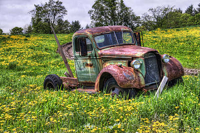 Photograph - Off The Road by Tammy Wetzel