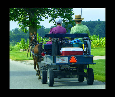 Amish Community Photograph - Off To A Picnic by Tina M Wenger