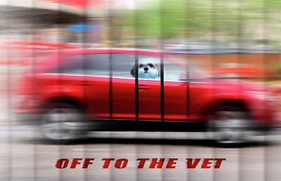 Off To The Vet - Shih Tzu Dog Art Art Print