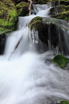 Photograph - Offshoot Of Big Creek In The Great Smoky Mountains National Park by Carol Montoya