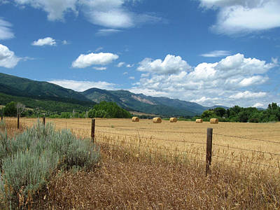 Photograph - Ogden Valley Hay Bales Photo by David King