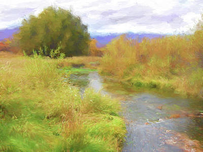 Digital Art - Ogden Valley Wetland by David King