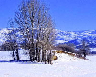 Photograph - Ogden Valley Winter by David King