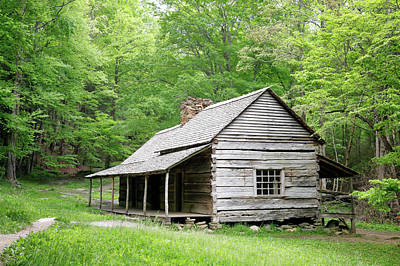 Photograph - Ogle Cabin by Nicholas Blackwell