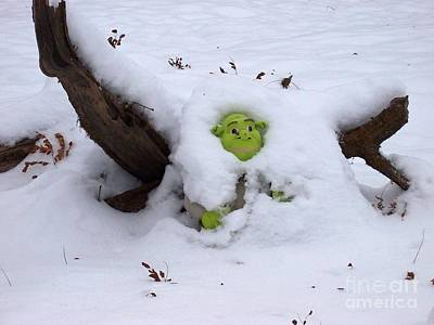 Photograph - Ogre by David and Lynn Keller