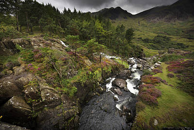 Photograph - Ogwen Falls by Richard Wiggins