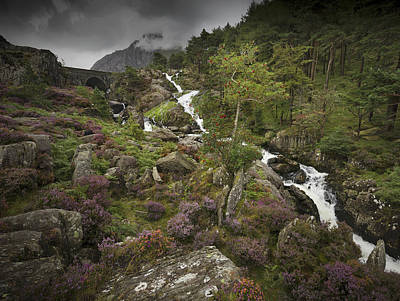 Photograph - Ogwen Valley Falls by Richard Wiggins