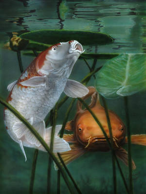 Painting - Oh Boy More Koi by Wayne Pruse