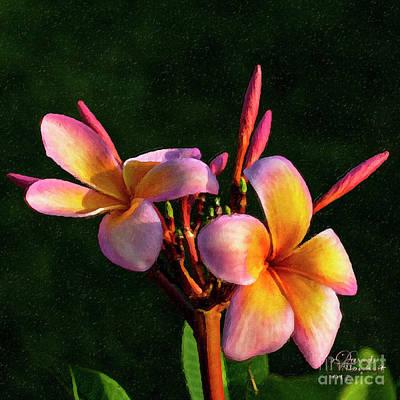 Mixed Media - Oh My Pink Plumeria by David Millenheft