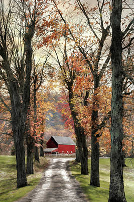 Photograph - Oh Those Country Roads by Lori Deiter
