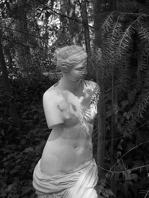 Photograph - Oh Venus by Marie Neder