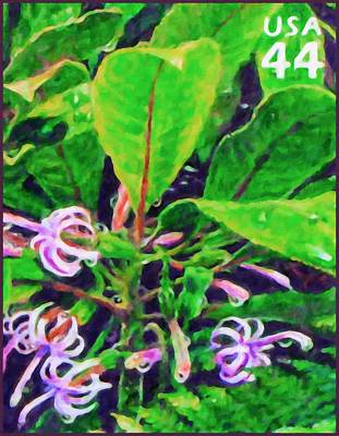 Tropical Stamps Painting - Oha Flower by Lanjee Chee