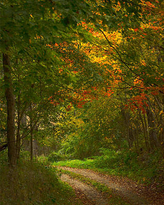 Photograph - Ohio Driveway by Pam Kaster