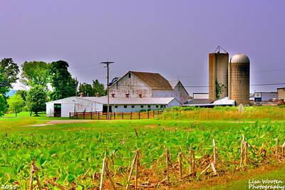 Photograph - Ohio Farm House H D R by Lisa Wooten