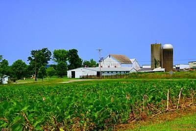 Photograph - Ohio Farm House  by Lisa Wooten