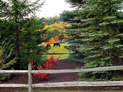 Art Print featuring the photograph Ohio Farm In Autumn by Joan  Minchak