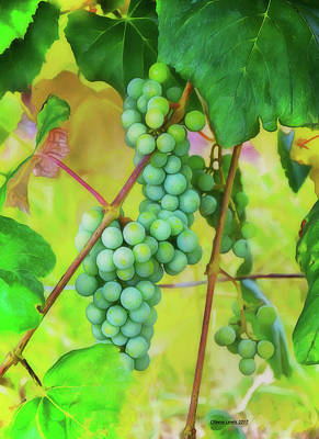 Grape Leaf Mixed Media - Ohio Grapes by Reese Lewis