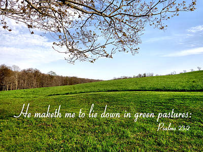 Photograph - Ohio Green Pastures Psalms  by Kathy K McClellan